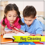 area rugs and oriental rug cleaning